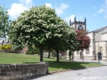 St Johns grounds